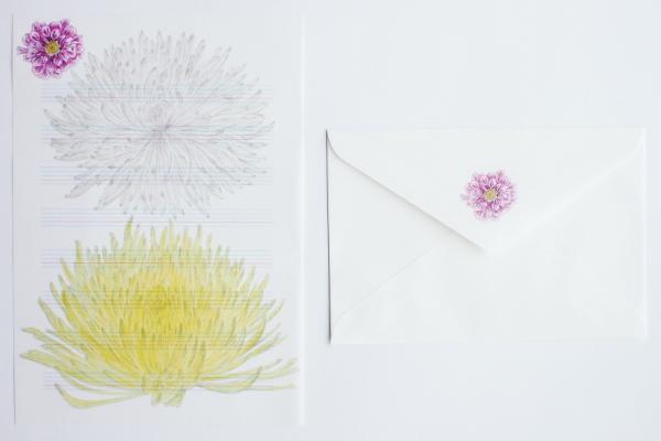 赤飯堂/季節の手紙セット 秋